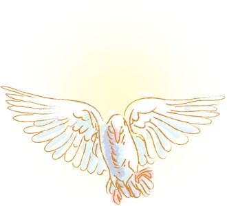 Gold Dove Image