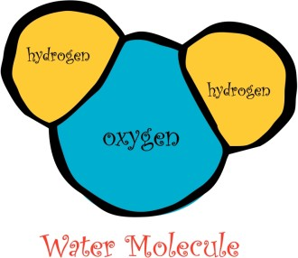 Fun Water Molecule Diagram