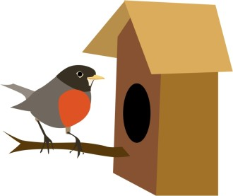 Robin Finds a Bird House