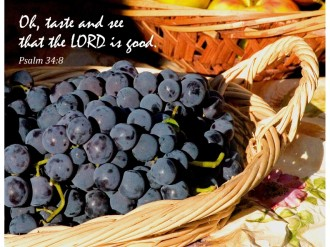 Thanksgiving Taste and See with Psalm