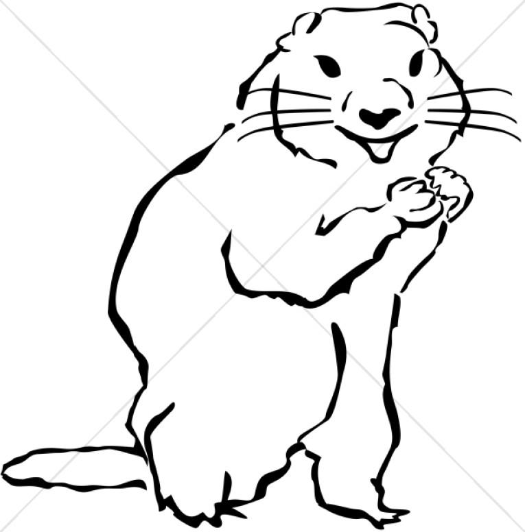 Groundhog Wildlife Clipart