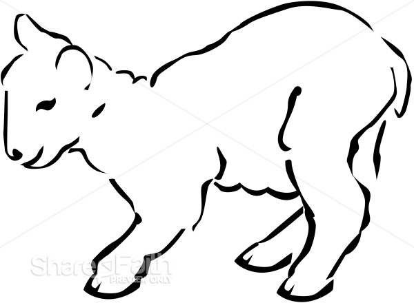Line Art of a Lamb