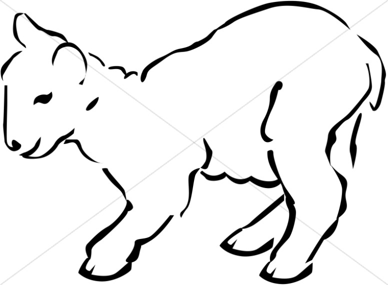 Line Art of a Lamb
