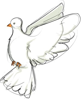 Flying Dove Sketch Facing Left