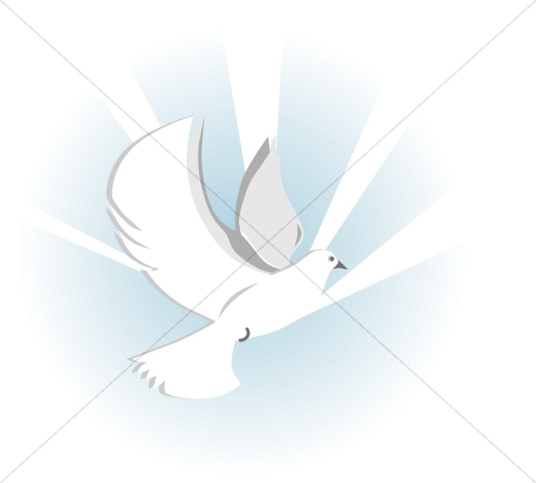 Dove with Blue Rays