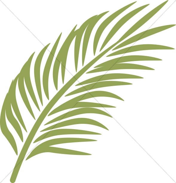 Single Palm in Calming Green
