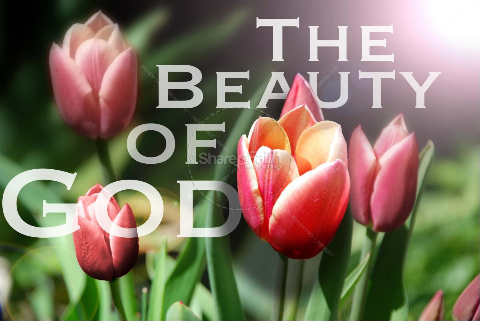 sermon the beauty of god s The biblical vision of the christian life is a lifestyle of enjoying relationship with  god by delighting in his beauty jesus not only saves, forgives, and heals, but he .