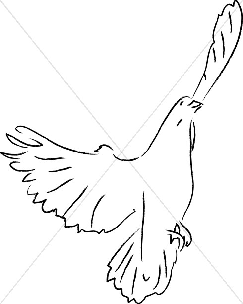 Black and White Dove Ascending