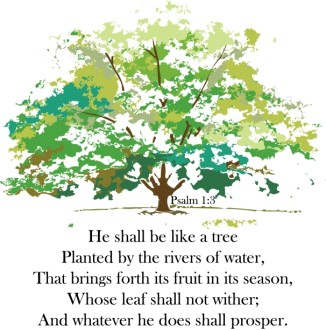 A Tree Planted by Rivers
