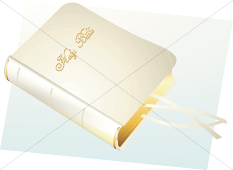 Holy Bible in White