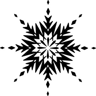 Black and White Ice Crystal Snowflake