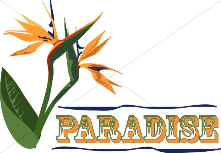 Paradise Clipart