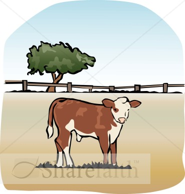 The Fatted Calf