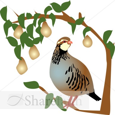 Partridge in a Pear Tree Clipart Religious Christmas Clipart