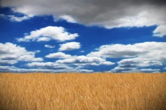 Wheat Field Worship Video