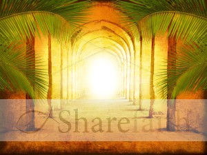 Palm Sunday Worship Background