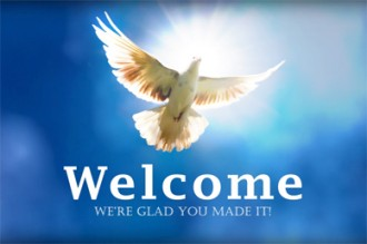 Welcome Video Splash Screen Dove In The Clouds
