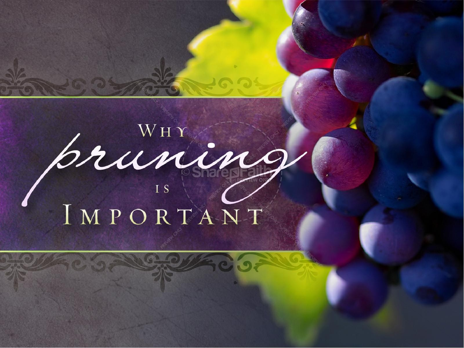 Pruning Is Important Christian PowerPoint | slide 2