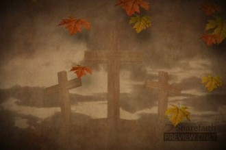 Falling Leaves and Cross Motion Video