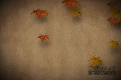 Autumn Leaves Falling Church Video Loop