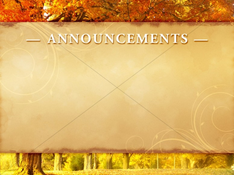 Autumn Woods Announcement Background Slide