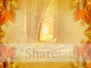Wooded Path Worship Background