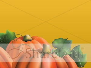 Pumpkins On The Vine Background Slide