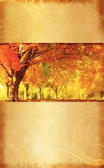 Autumn Trees Bulletin Cover