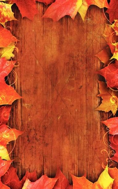 Thanksgiving Story Program Cover Harvest Fall Church