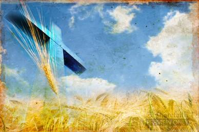 Cross Harvest Video Background