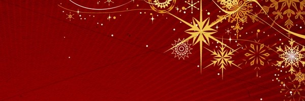 Beautiful Snowflake Christmas Email Banner