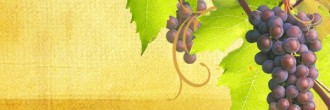 Grapes Email Banner