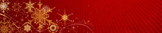 Gold Snowflakes Email Footer