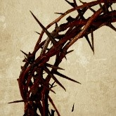 Crown of Thorns Email Image
