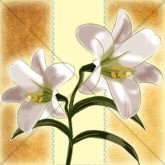 Easter Lily Email Image