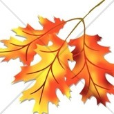 Orange and Gold Autumn Leaves Email Image