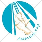 Ascension Day Dove Email Salutation