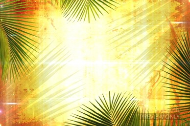 Palm Sunday Branches Worship Video