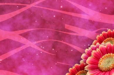 Flower Video Loop