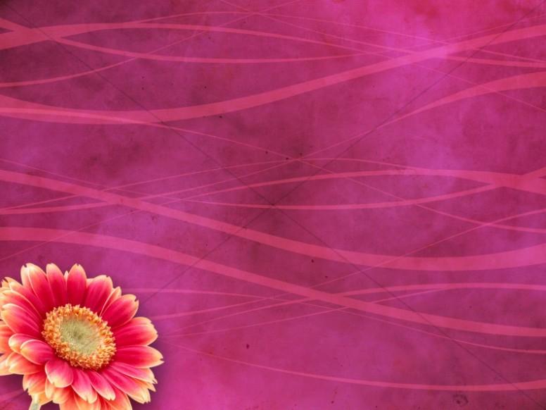 flower worship background