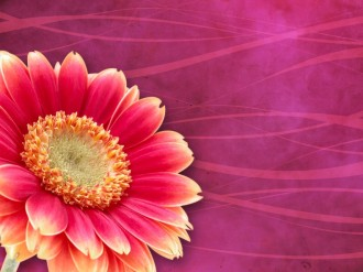 Floral Worship Background