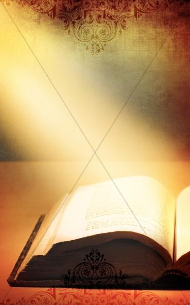 Bible Program Cover