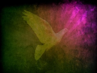 Dove Worship Background