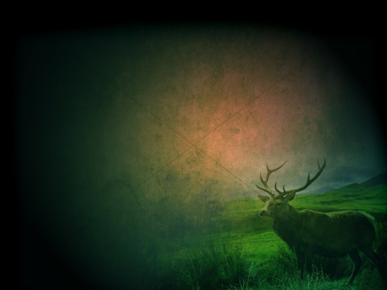 Deer Worship Background