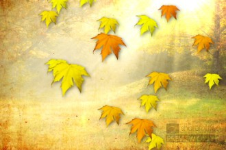Falling Leaves Church Video