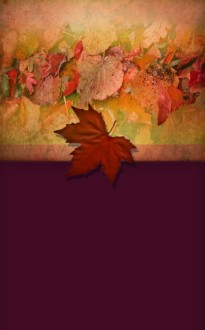 Pictures of Leaves Bulletin Cover