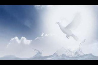 Dove Worship Video Background Loop