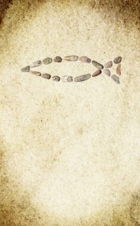 Fish Symbol Bulletin Cover