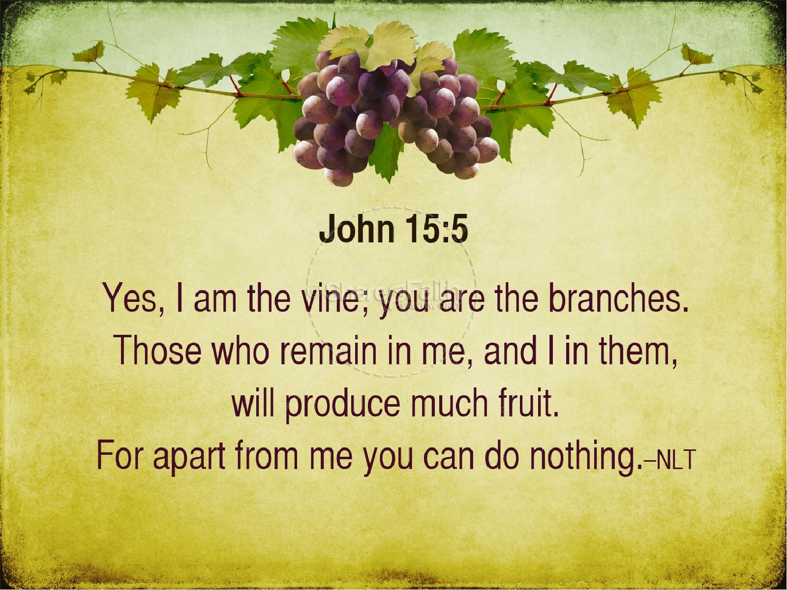 I am the Vine You Are The Branches PowerPoint Sermon