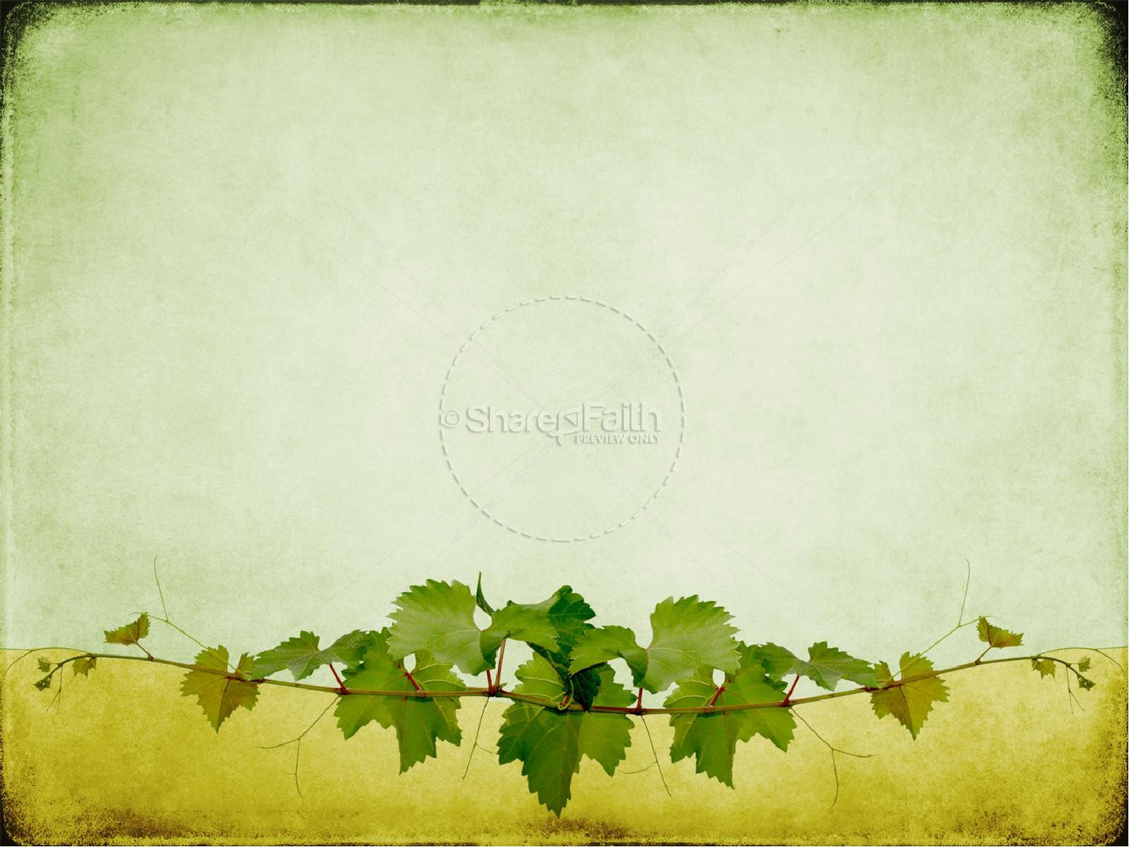 ... the Vine You Are The Branches PowerPoint Sermon | PowerPoint Sermons